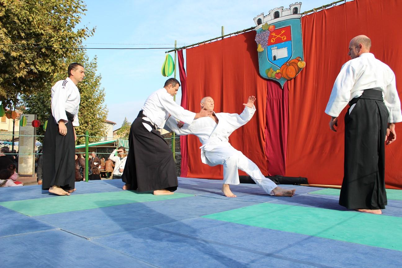 demo aikido (1)