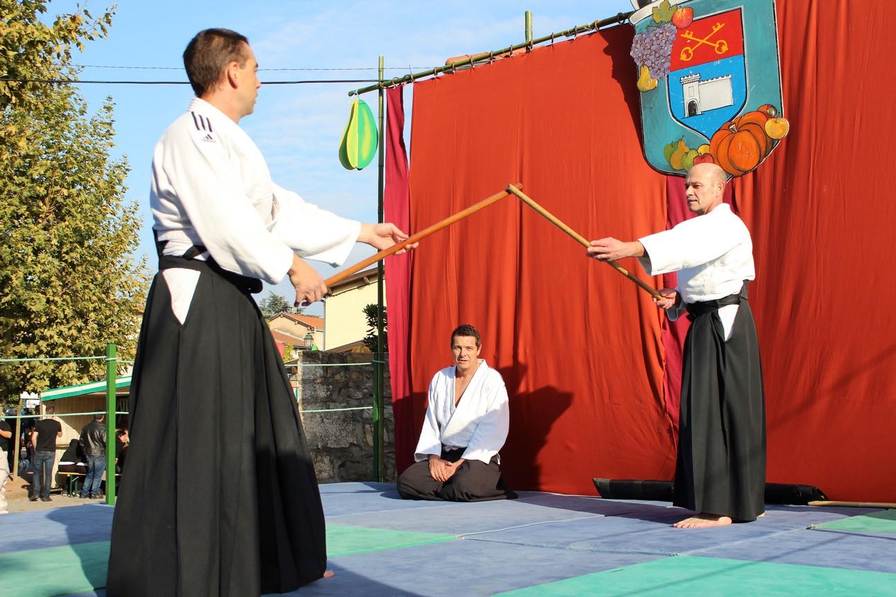demo aikido (10)
