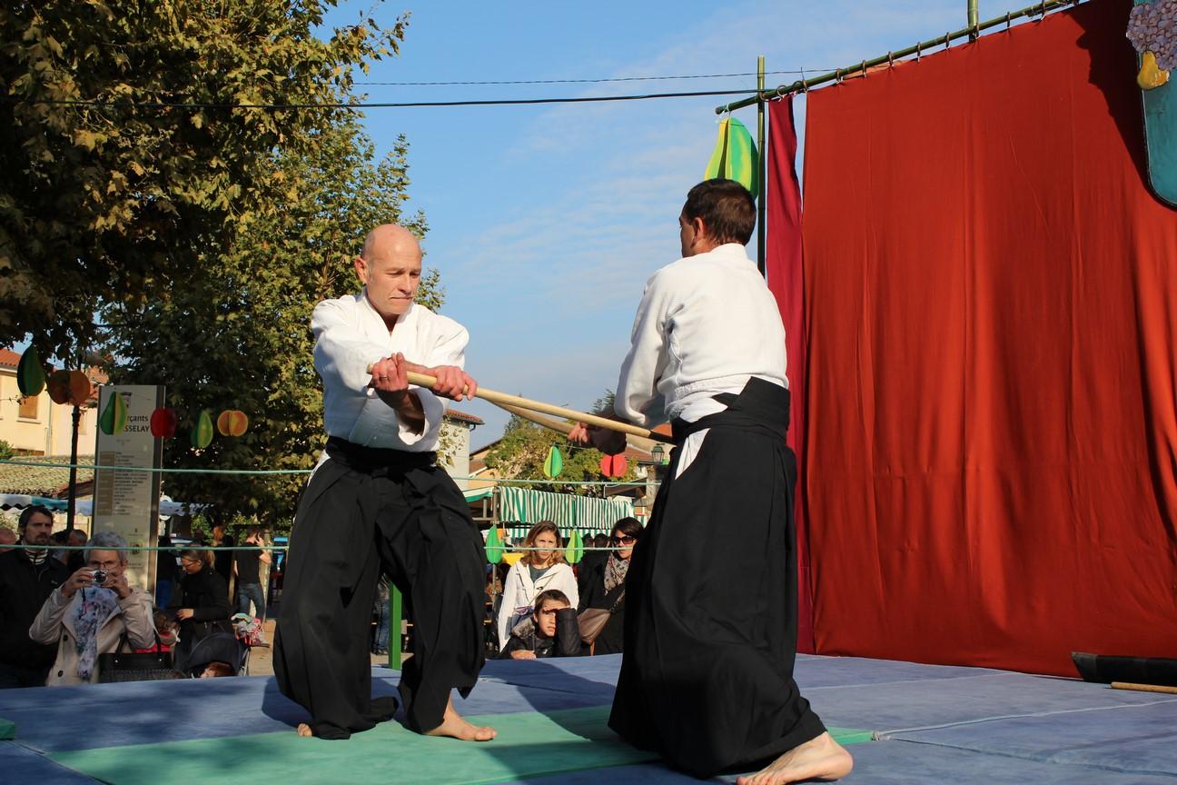 demo aikido (11)