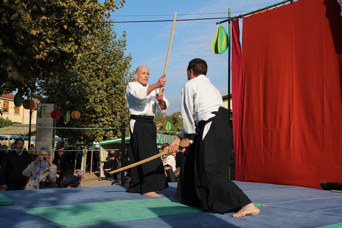 demo aikido (12)
