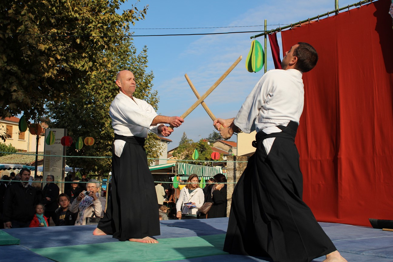 demo aikido (13)