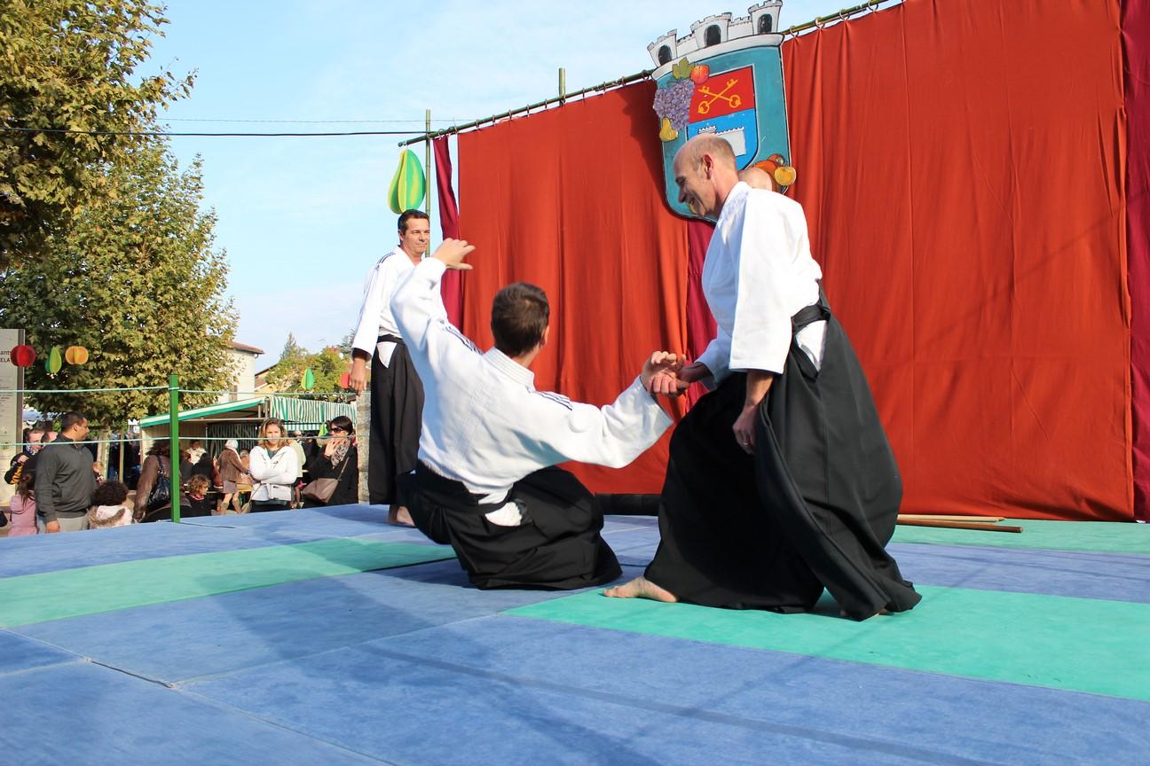 demo aikido (2)