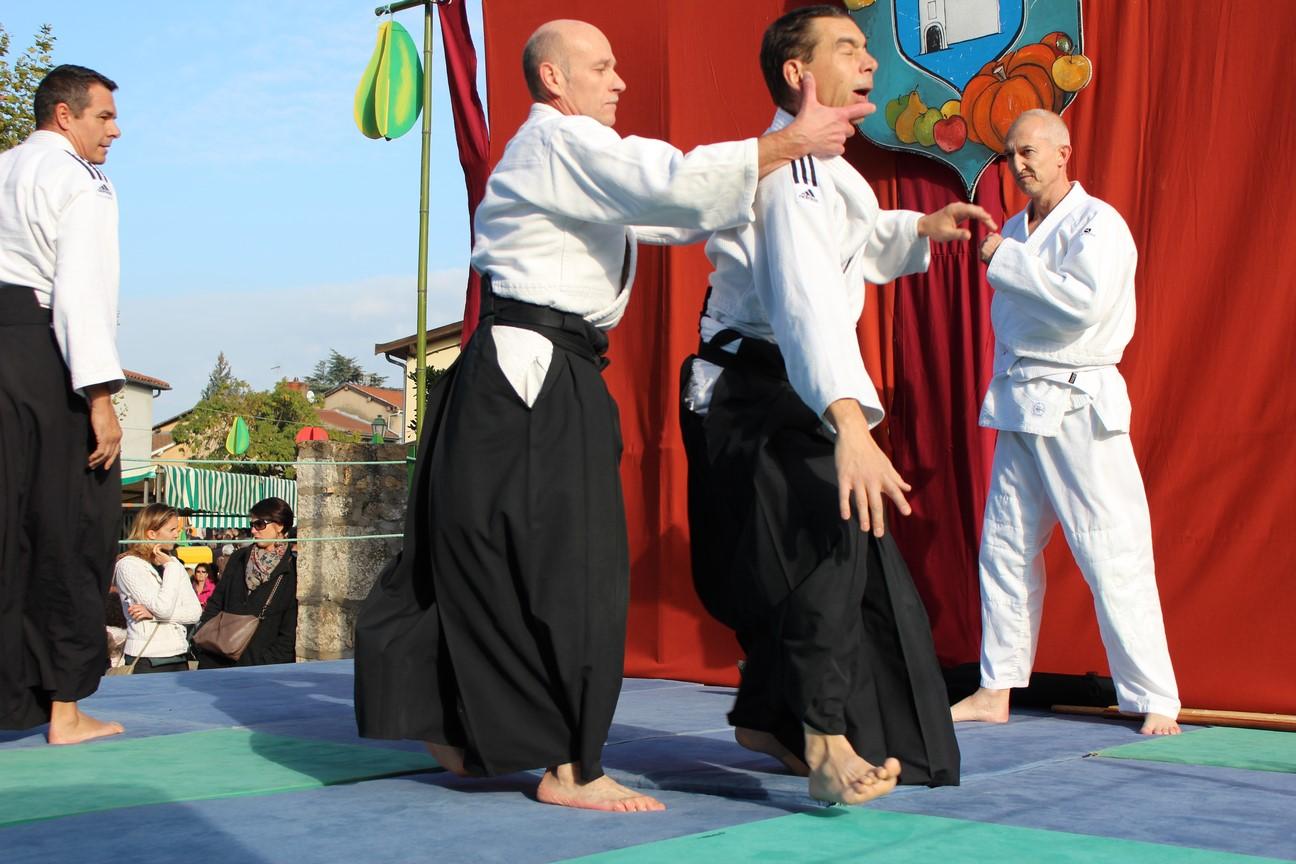 demo aikido (3)