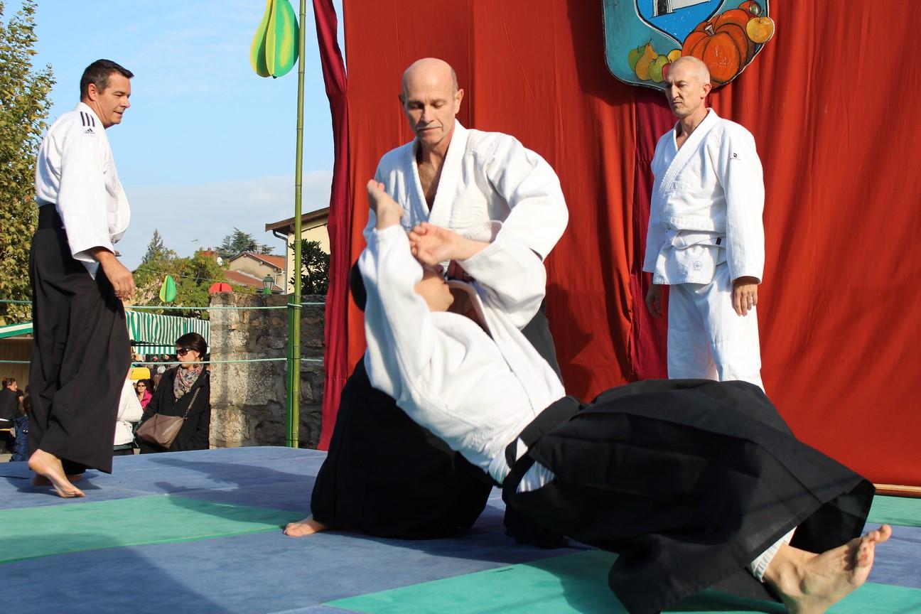 demo aikido (4)