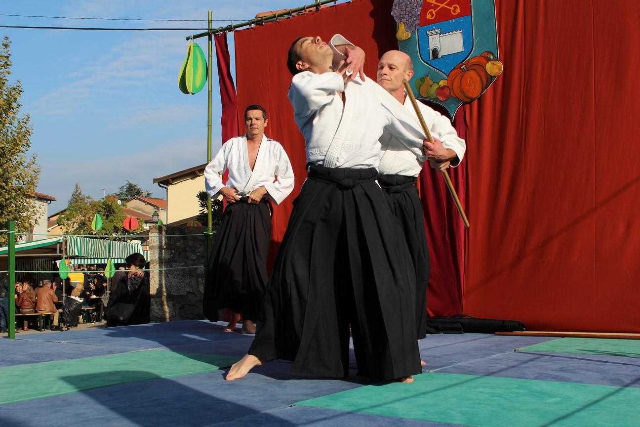 demo aikido (5)