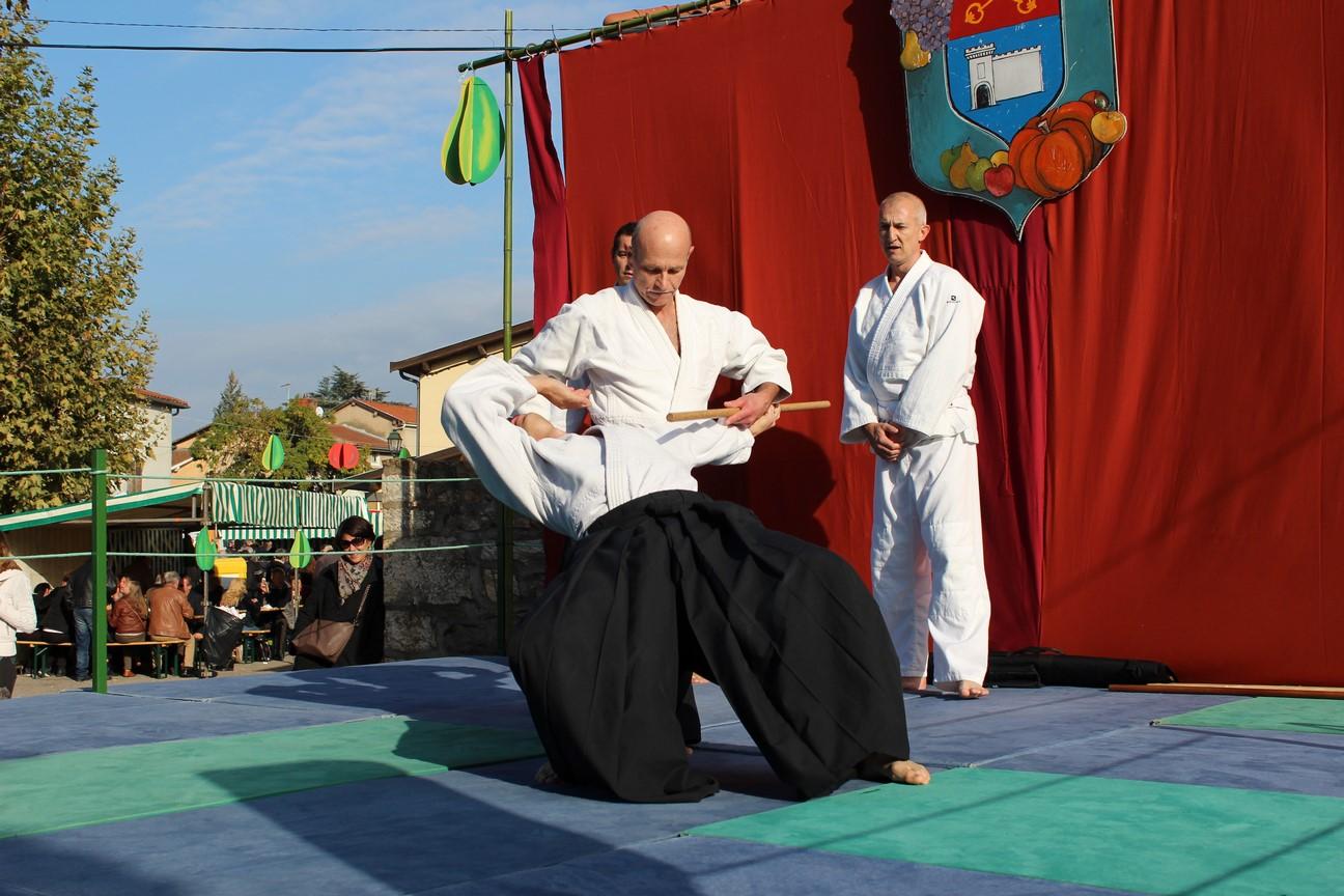 demo aikido (6)
