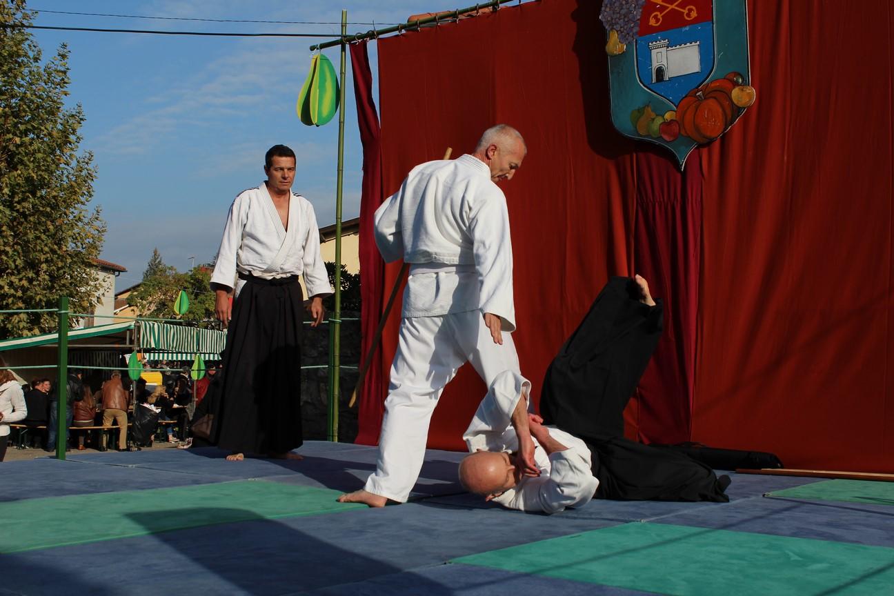 demo aikido (7)