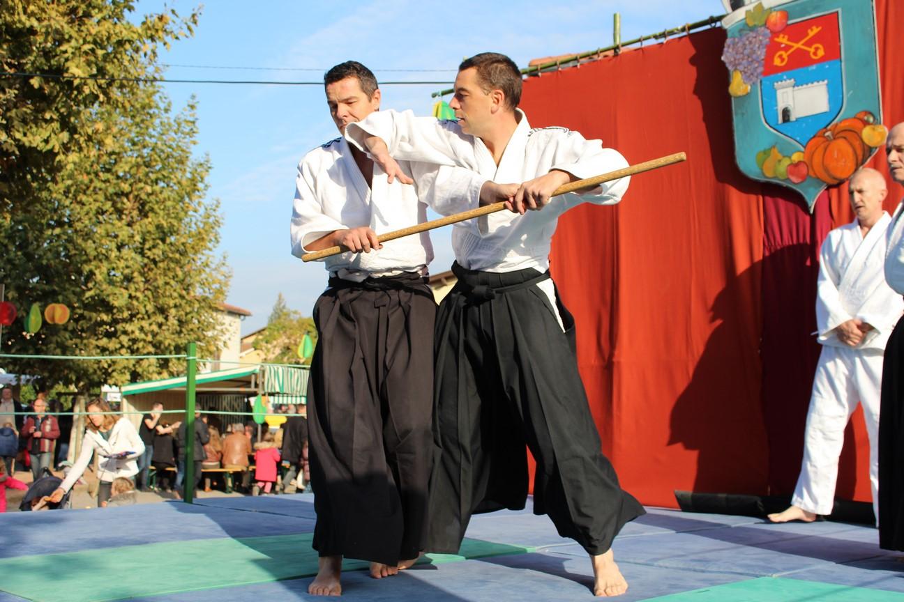 demo aikido (8)