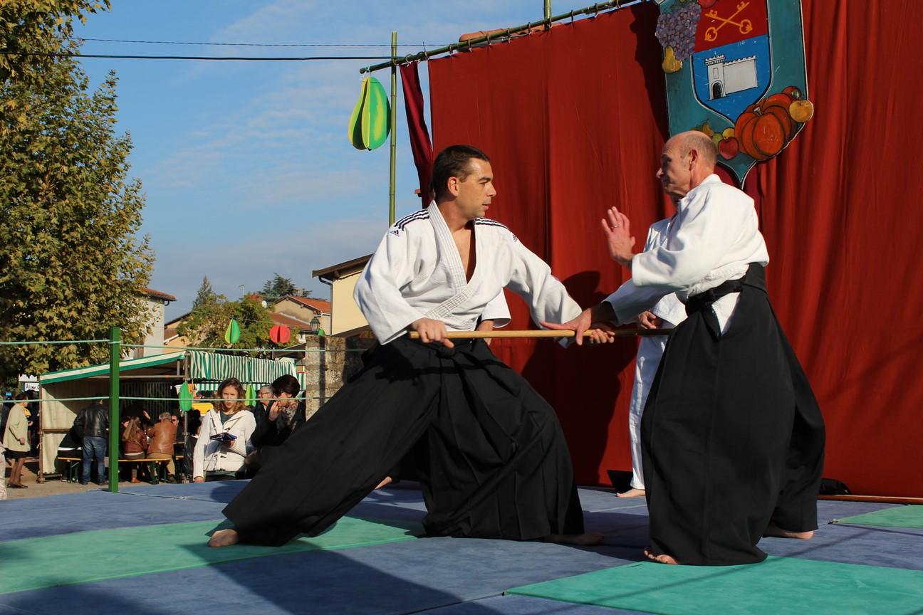 demo aikido (9)