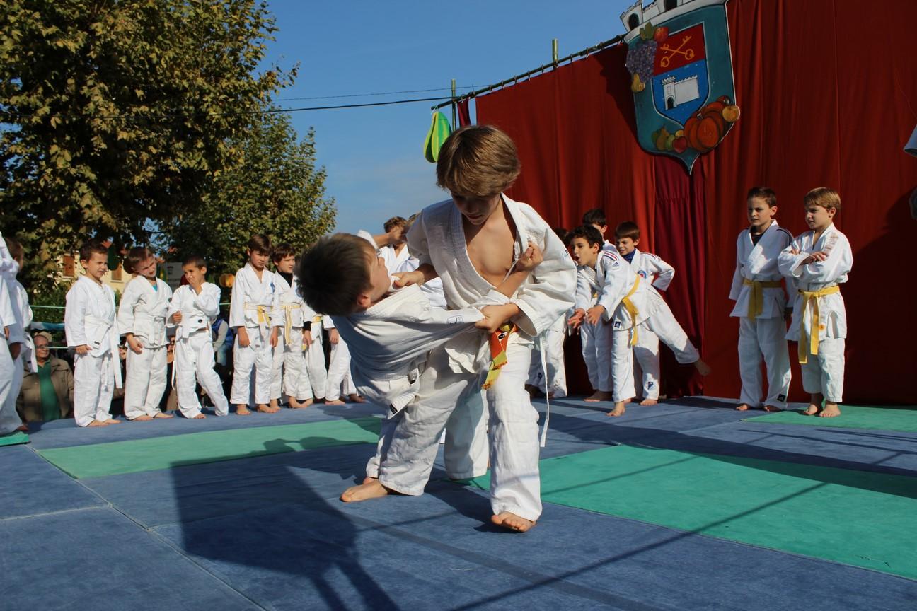 demo judo (1)