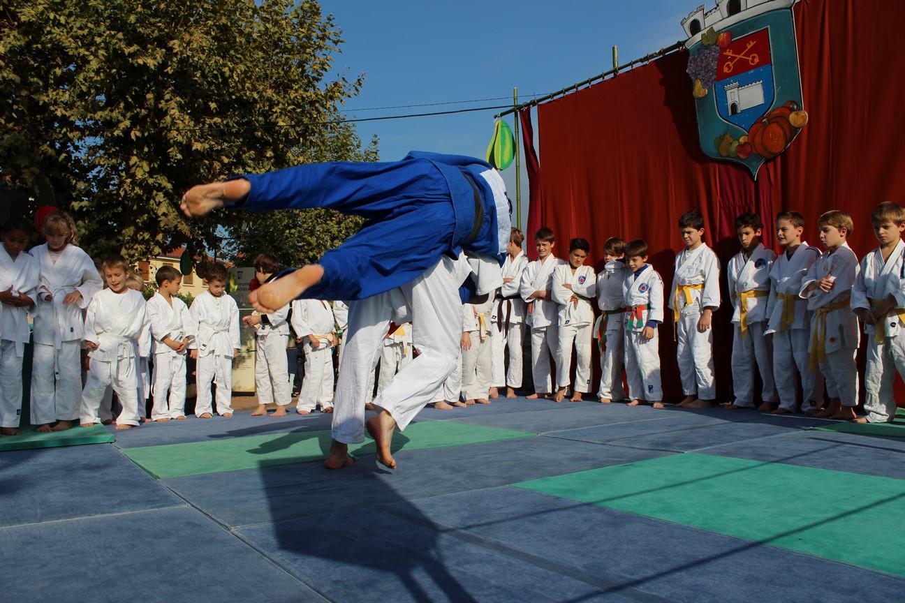 demo judo (11)