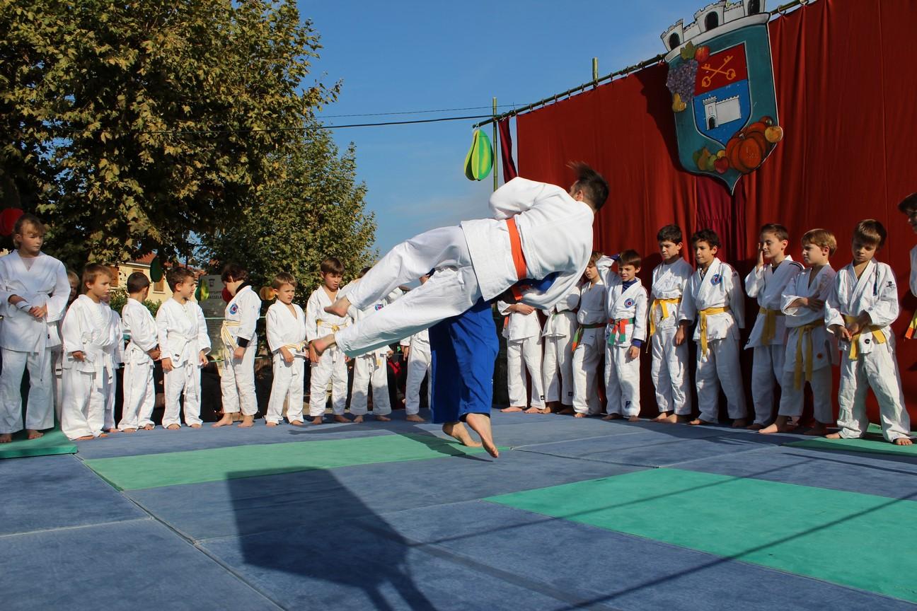 demo judo (12)