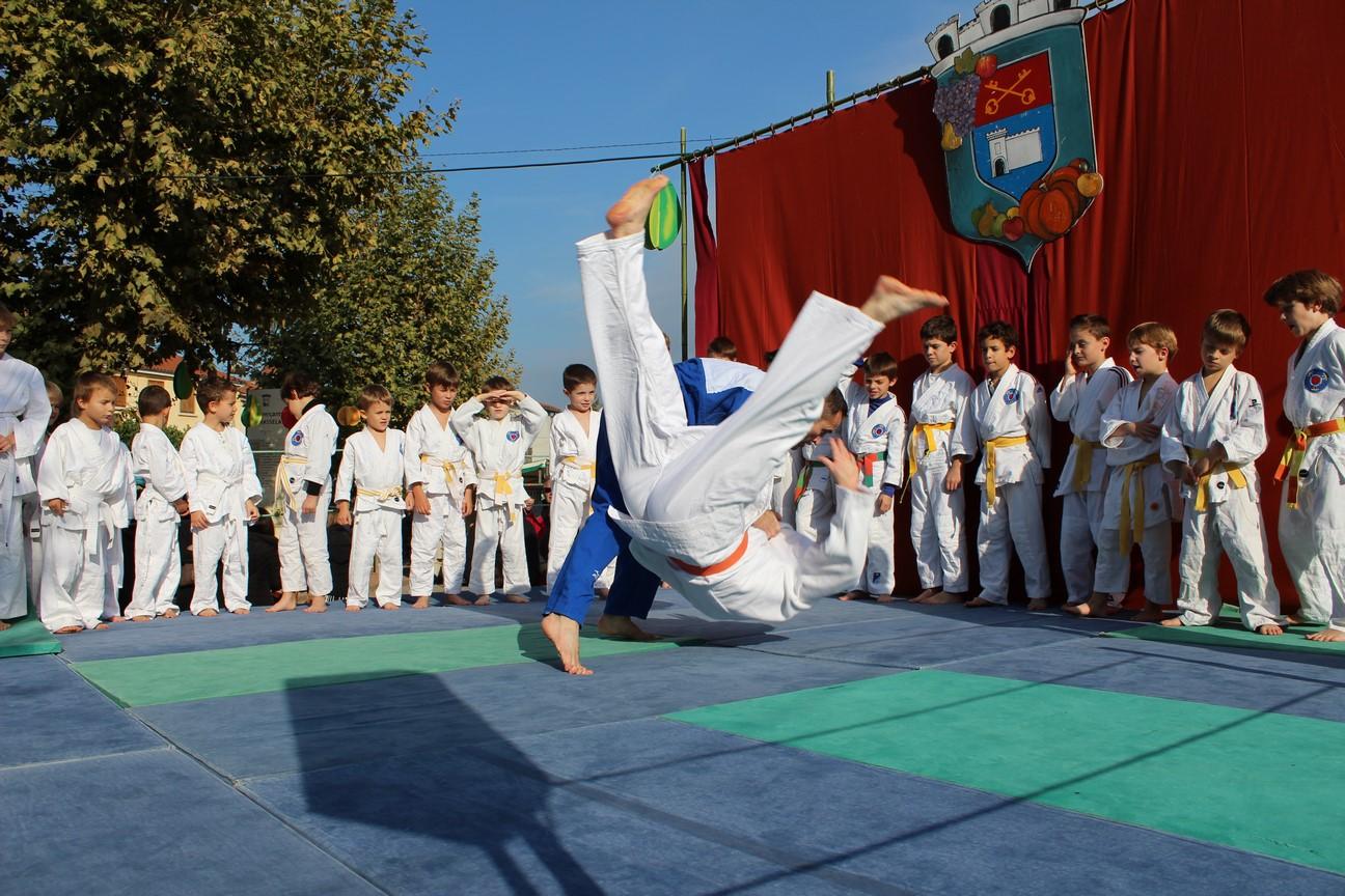 demo judo (13)