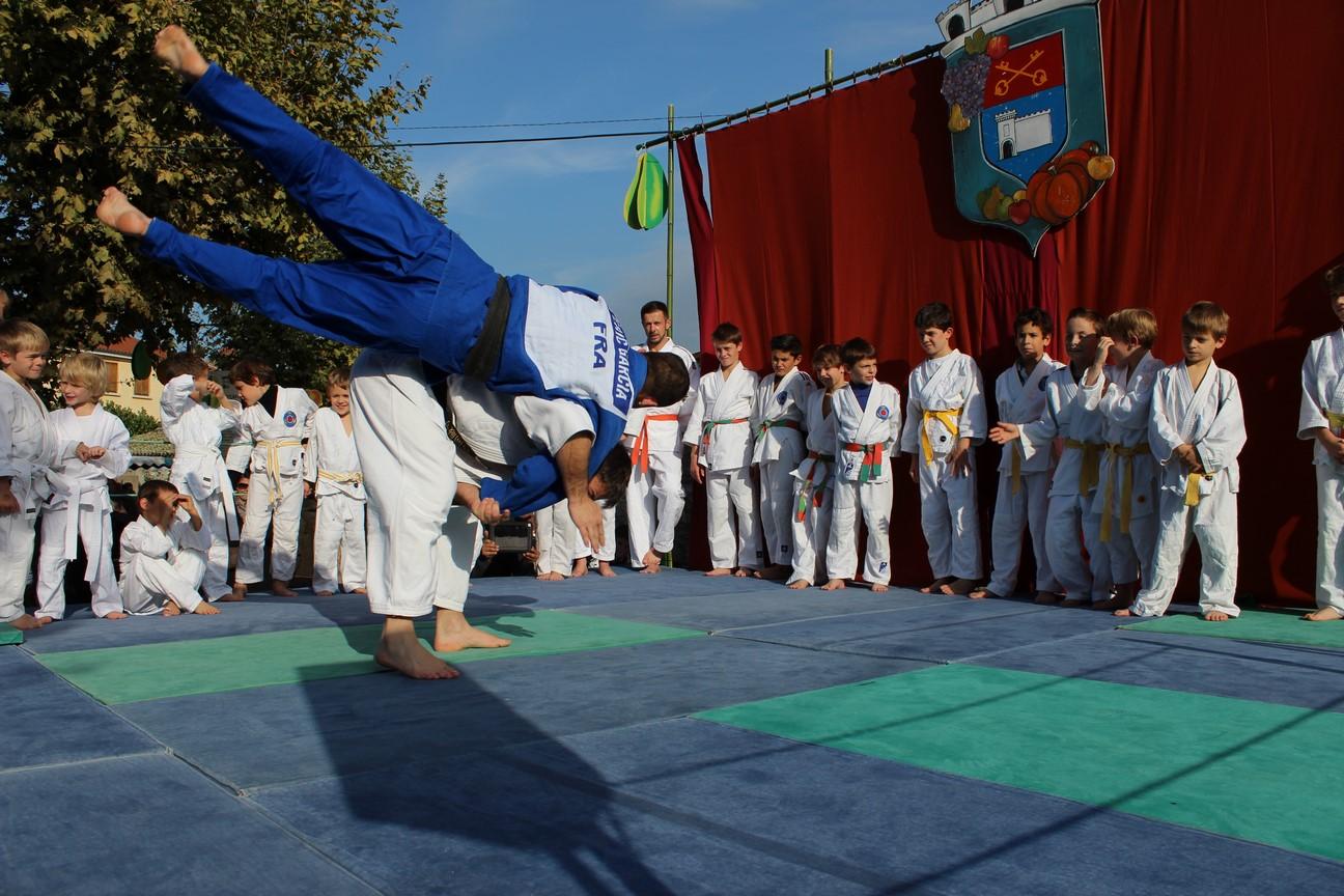 demo judo (14)
