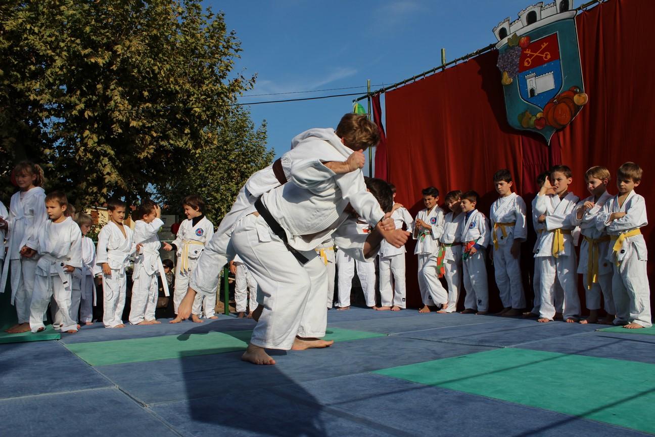 demo judo (16)
