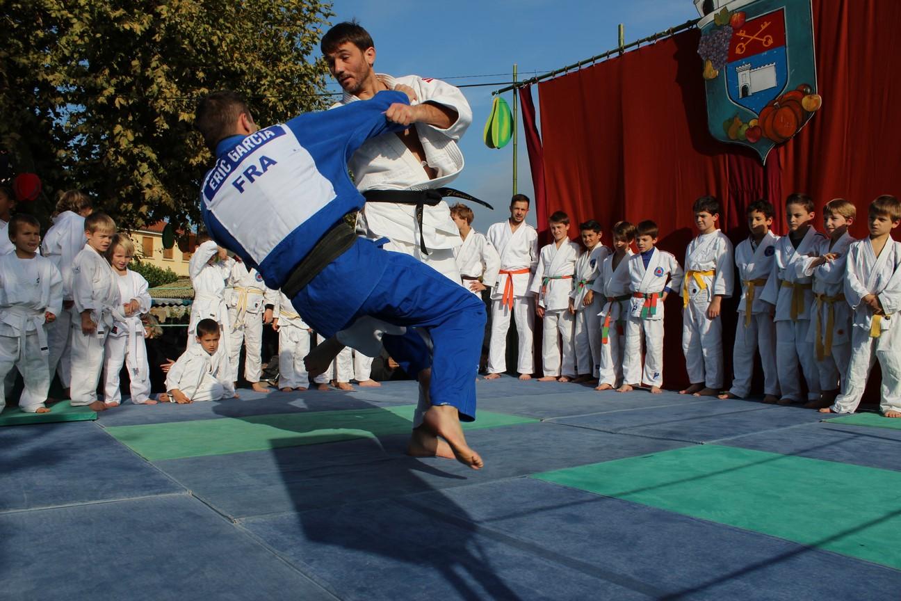 demo judo (17)