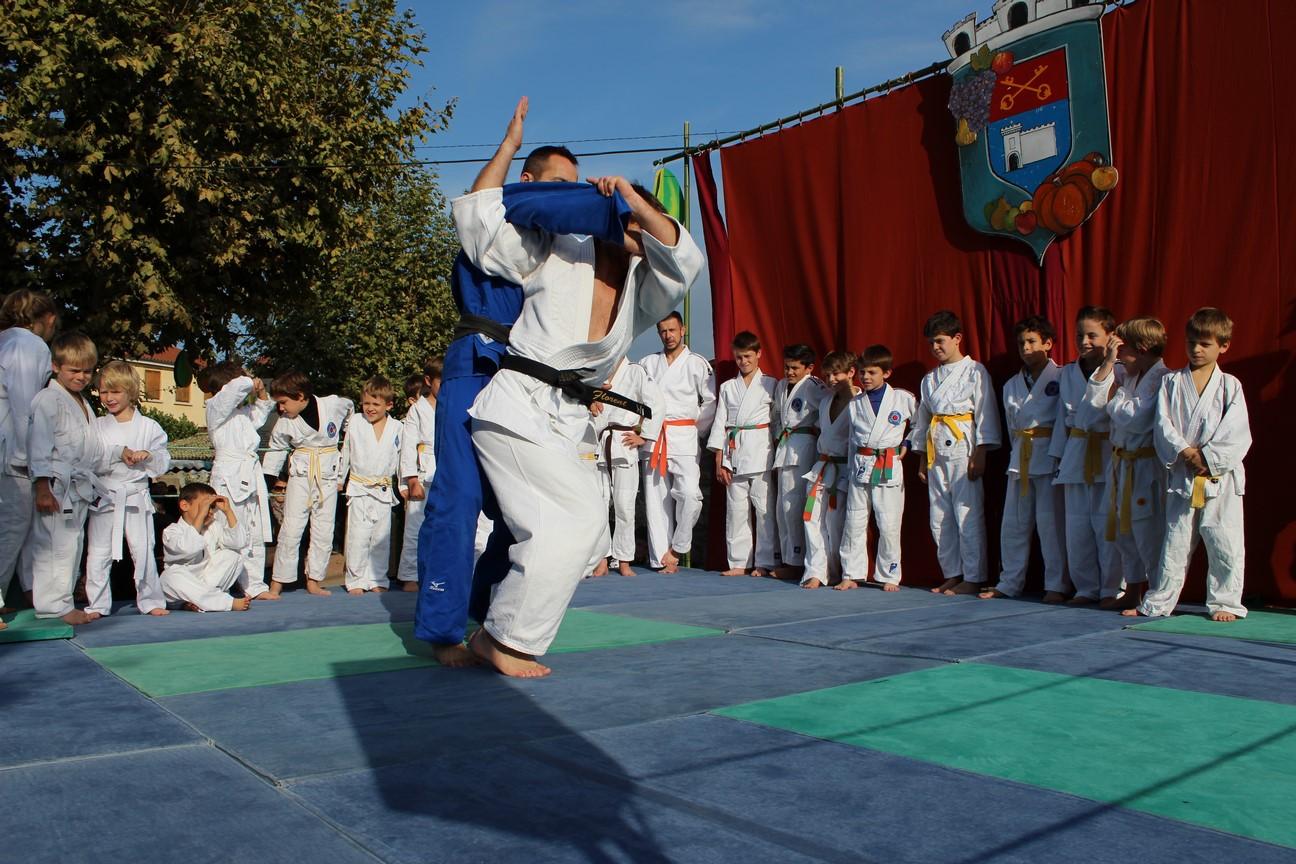 demo judo (18)