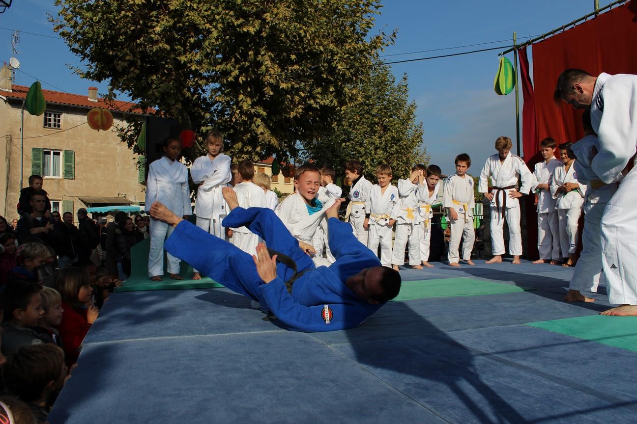 demo judo (3)