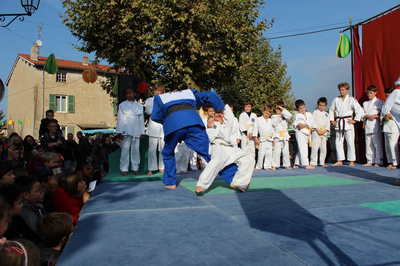 demo judo (4)