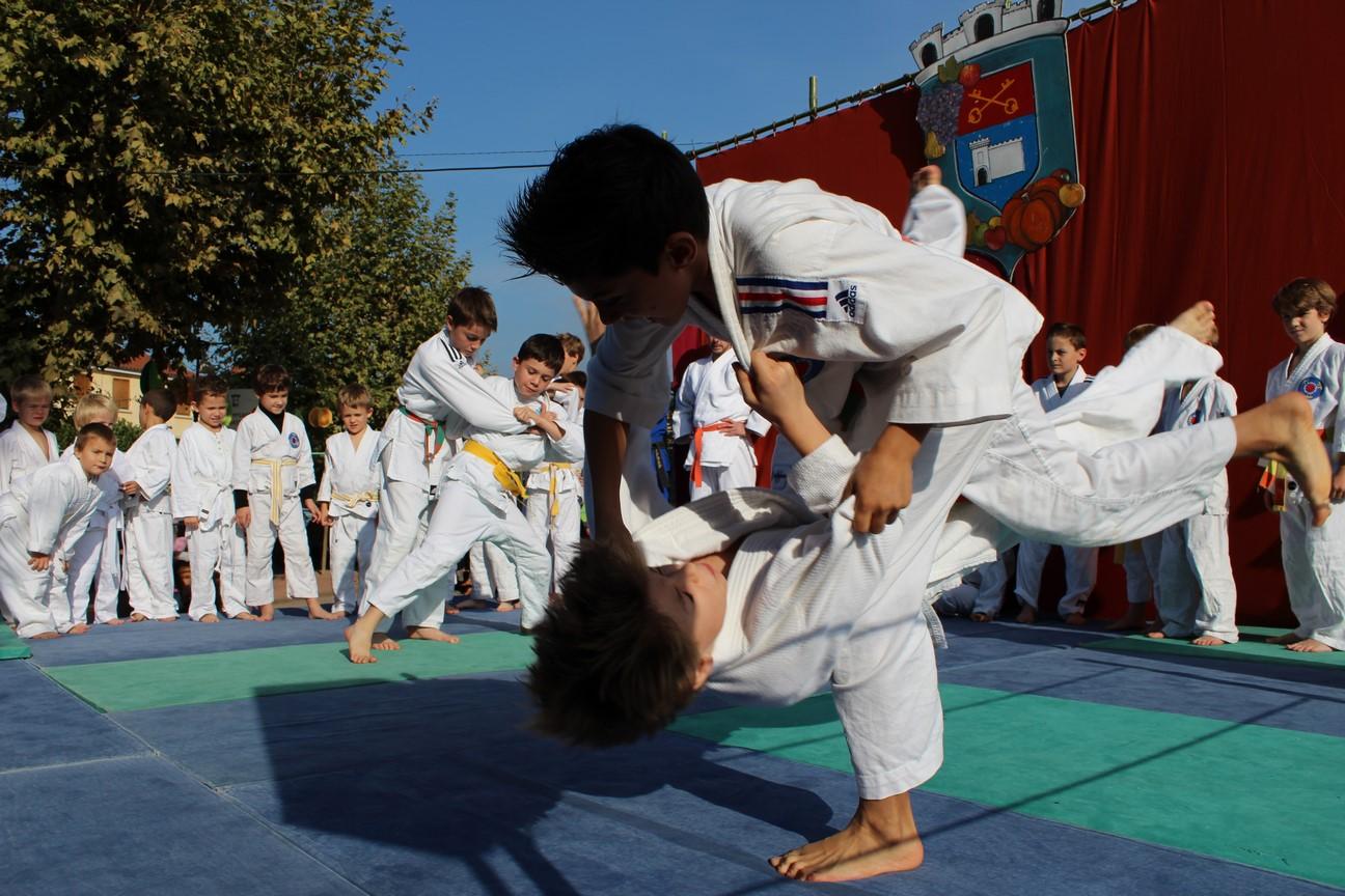 demo judo (6)