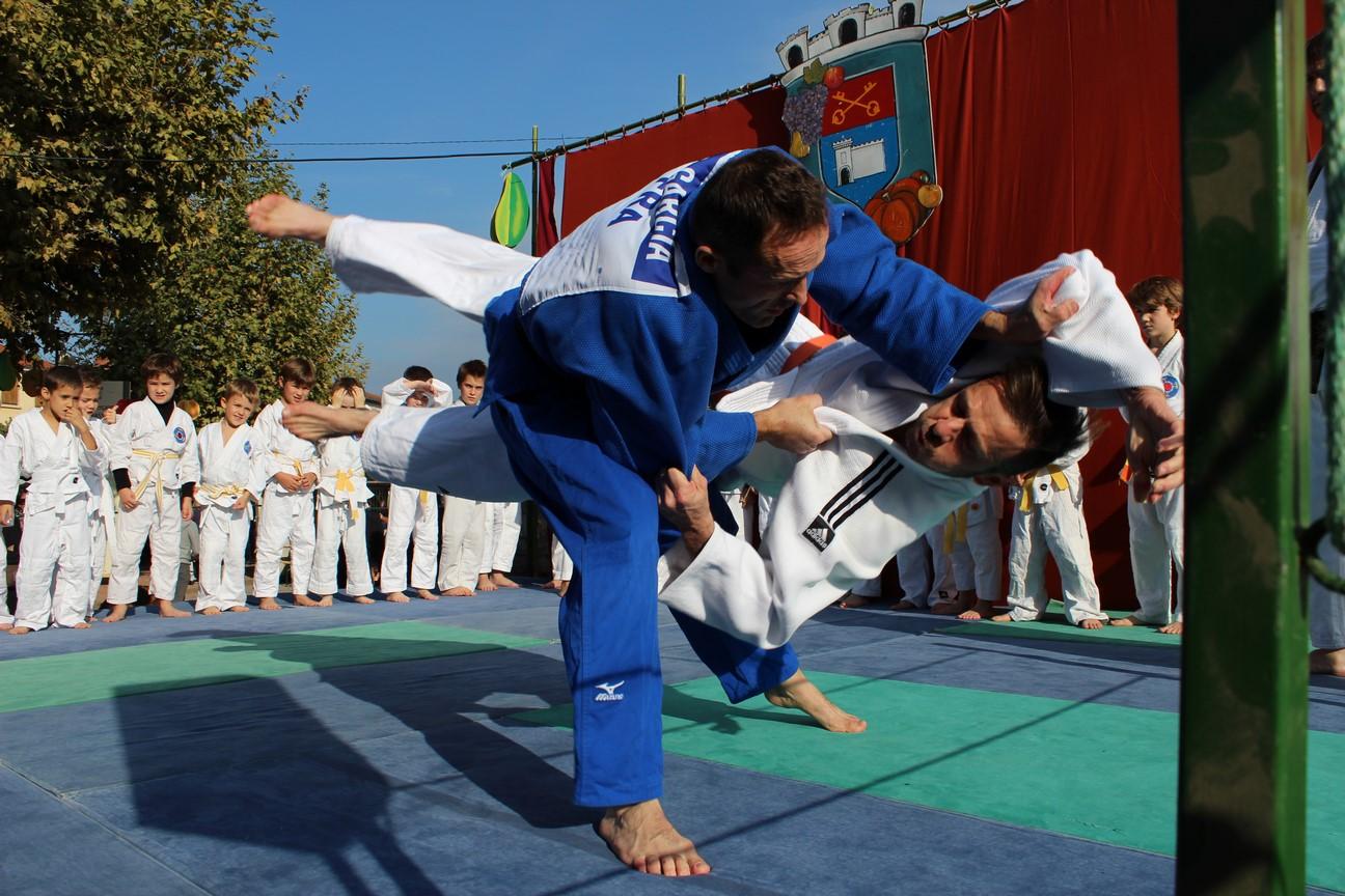 demo judo (8)