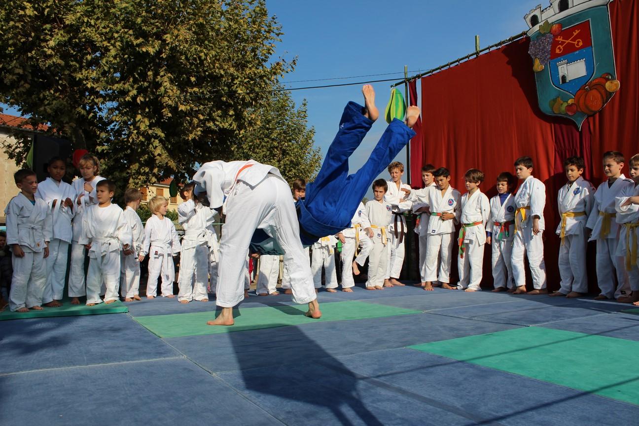 demo judo (9)