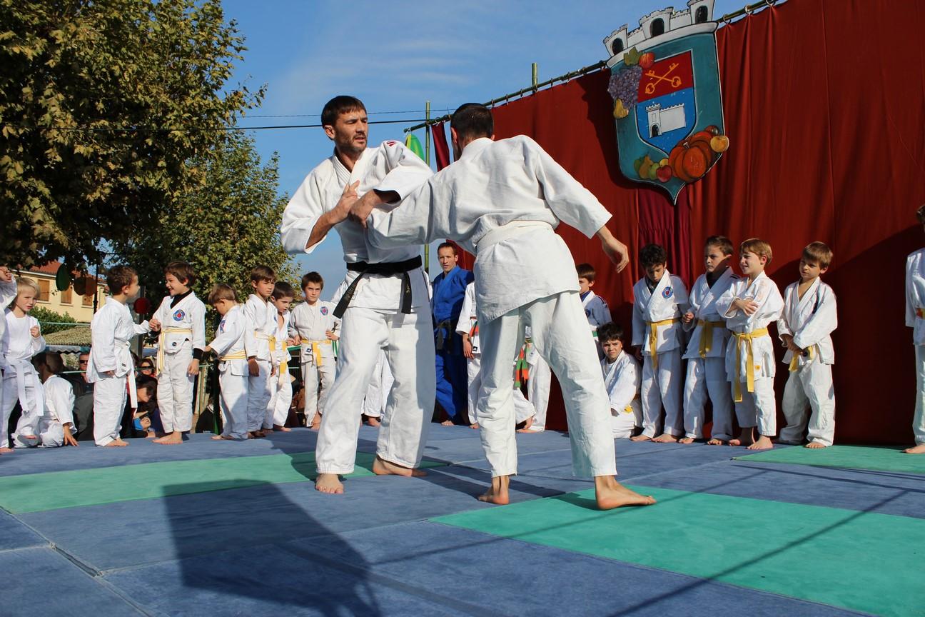 demo jujitsu (1)