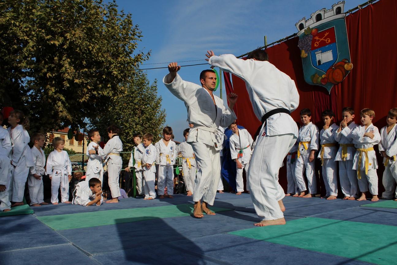 demo jujitsu (3)