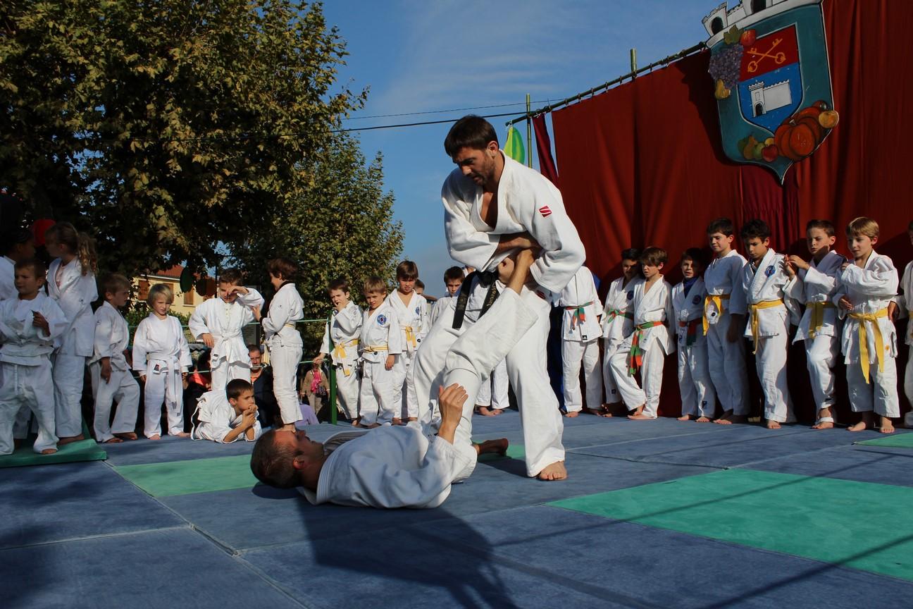 demo jujitsu (5)