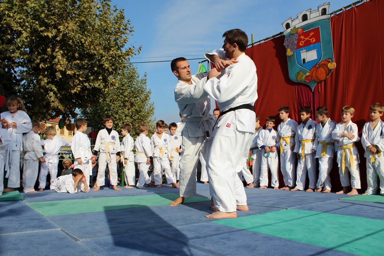 demo jujitsu (6)